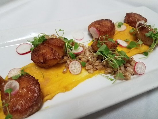 Lewiston, ME: Fresh scallops with butternut puree, farro, radishes and baby arugula