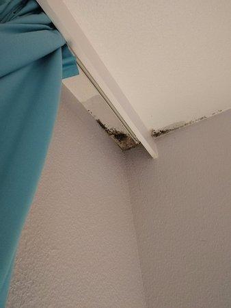 Antony, France: présence d'humidité et moisi au dessus du lit