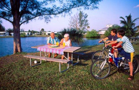 KOA Fort Myers / Pine Island-billede