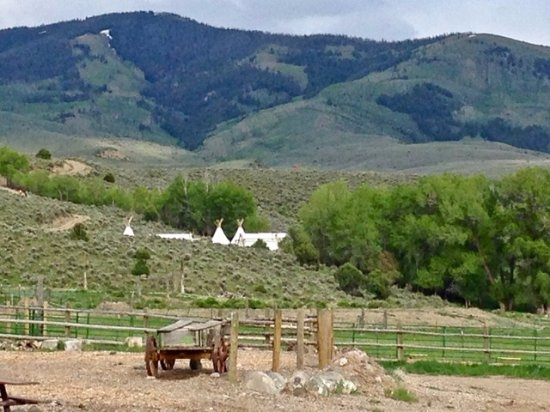 Wolcott, CO: Glamping tents hidden in the Cottonwood trees at 4 Eagle Ranch.