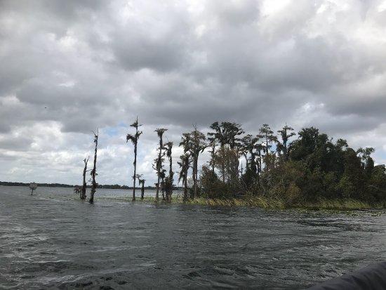 Windermere, FL: photo3.jpg