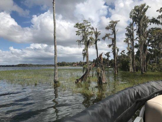 Windermere, FL: photo4.jpg