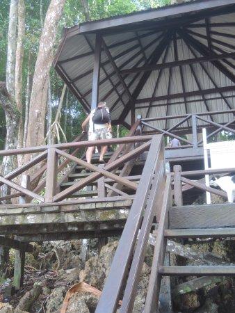 East Kalimantan, Indonesia: photo1.jpg
