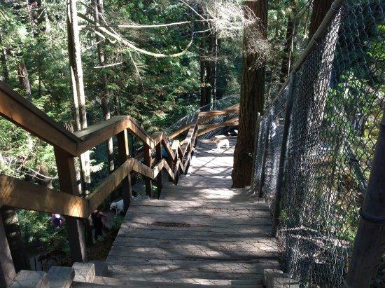 نورث فانكوفر, كندا: Almost to the bridge