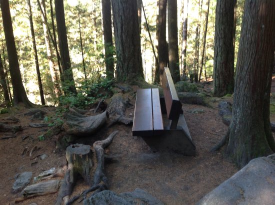 North Vancouver, Canadá: Found a bench to rest on