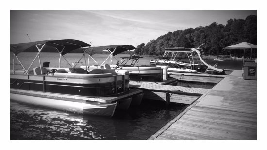 Young Harris Water Sports: Tritoon (Pontoon) Boats for Rent