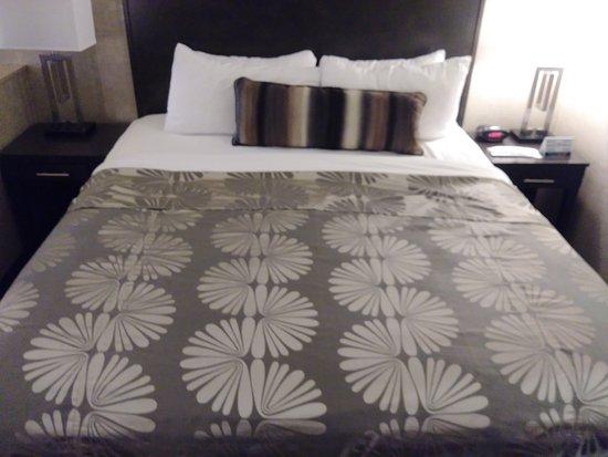 Best Western Plus Park Place Inn - Mini Suites : Bed