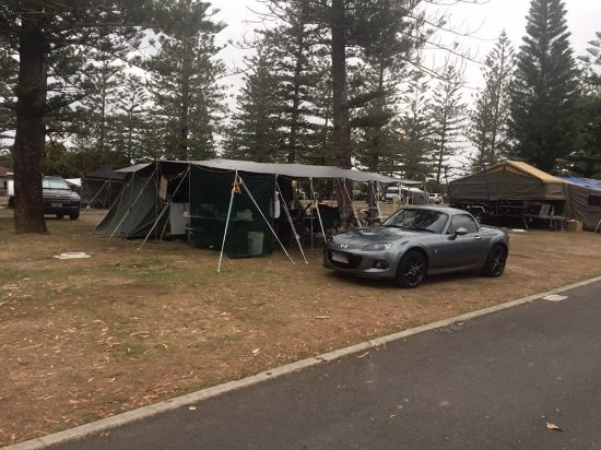 Palm Beach, Australia: Our tent site at Tallebudgera Creek Tourist Park complete with convertible!