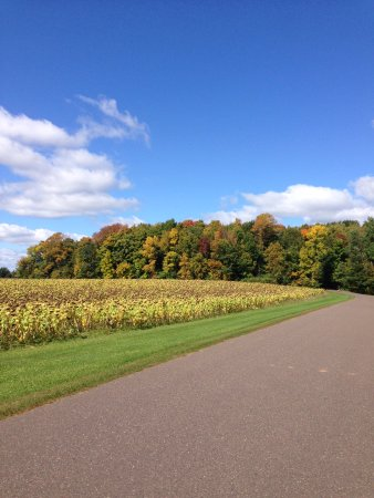 Birchwood, WI: The drive in to Gathering Place Resort & Lodge