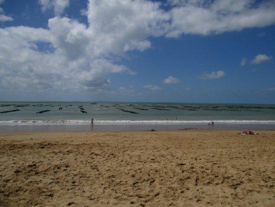 La Faute sur Mer, Francia: Plage des Chardons