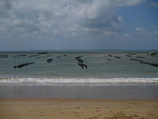 La Faute sur Mer照片