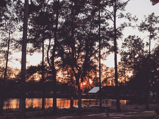 Hardeeville, Νότια Καρολίνα: photo8.jpg