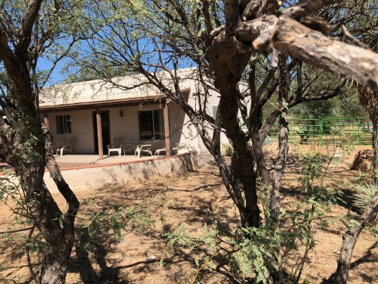 Tubac, AZ: Casita for rent by the week or month. Horses and dogs welcome. there are 2 horse stalls that go