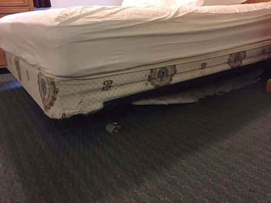 Handys Extended Stay Suites: The mattress springs are non-existent. The material is worn badly.