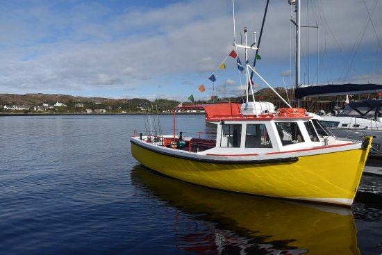 Lochinver, UK: Traditional and charming cruise boat in the harbour.