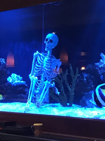 Kona Grill - Omaha : skeleton in the aquarium - nicely decorated for Halloween