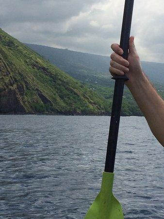 Honalo, Гавайи: Dolphins around us