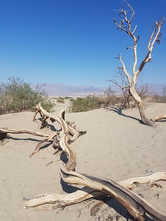 Badwater Death Valley National Park Ca Top Tips Before