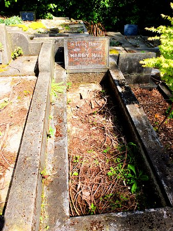 New Plymouth, New Zealand: Old grave