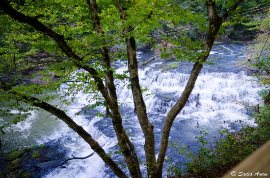 Burgess Falls State Park: Middle falls...