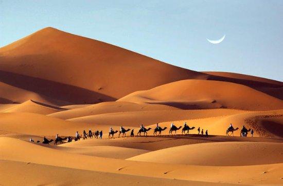 Private Tour: 2-Night Luxury Desert...