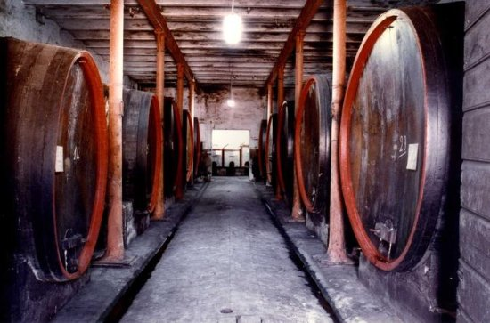 Wine Tasting and Cellar Tour in One...