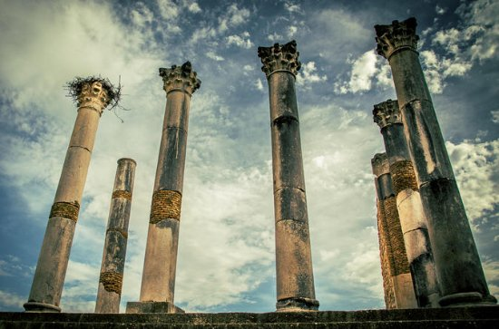 One Day Trip to Volubilis - Moulay...