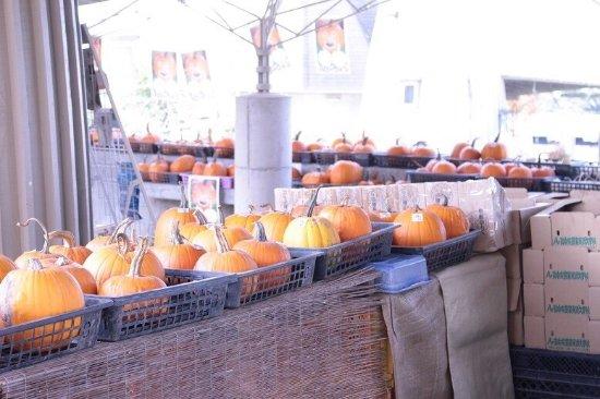 Hara-mura, Japonya: 八ヶ岳農場直売所