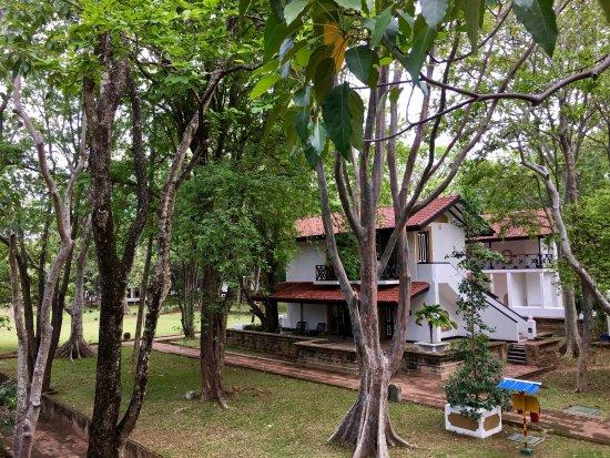 Cinnamon Lodge Habarana: photo3.jpg