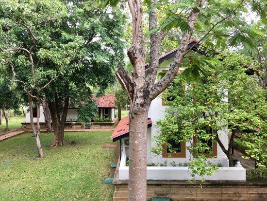 Cinnamon Lodge Habarana: photo4.jpg