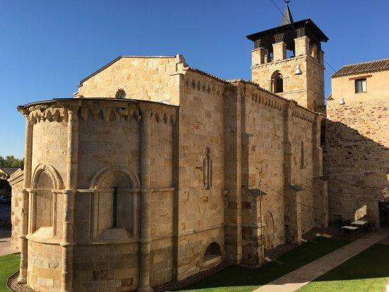 Zamora: photo5.jpg