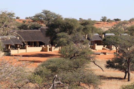 Zebra Kalahari Lodge: The lodge from the sandhill