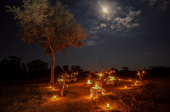 Nkorho Bush Lodge: Bush dinners under the stars are a great way to end an exciting day in the bush