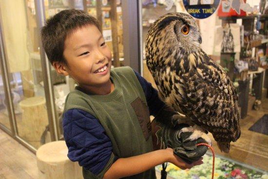 Musashino, ญี่ปุ่น: 小さなお子様も大きなボブさんを乗せてニッコリ☆