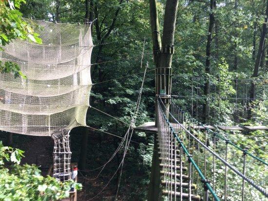 Wald-Abenteuer Velbert-Langenberg