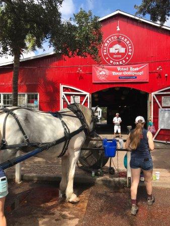 Tripadvisor Carriage Tours Charleston Sc