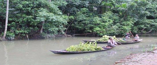 Barisal Division, بنجلاديش: Back water in Bangladesh