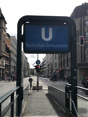 H+ Hotel Berlin Mitte : photo5.jpg