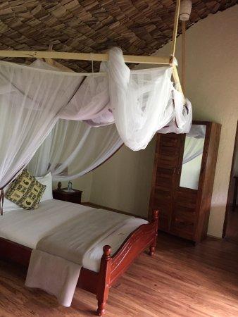 Bwindi Impenetrable National Park, Uganda: Lovely place for gorilla tracking