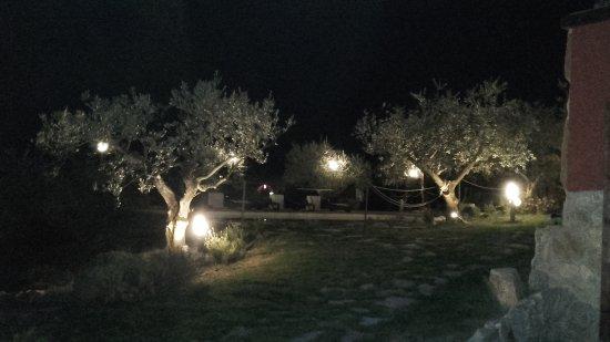 Illuminazione notturna foto di agriturismo la casetta di chiara