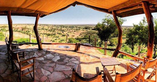 Eagle View, Mara Naboisho Photo