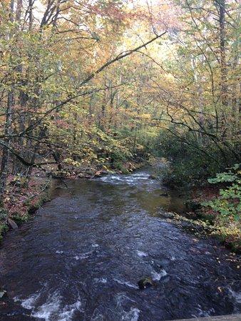 Waynesville, NC: Beautiful Scenery