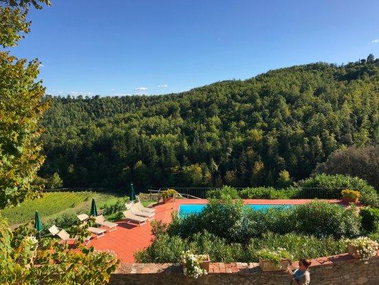 Vagliagli, Italien: スイートルームからの眺めわ