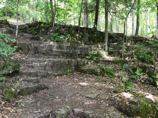 Eagle Trail : photo3.jpg