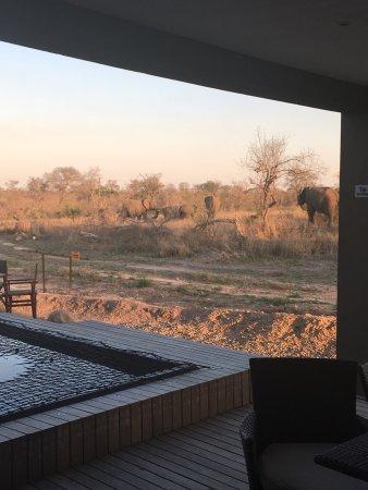 Hectorspruit, Sudáfrica: photo1.jpg