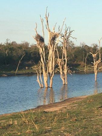 Hectorspruit, Sudáfrica: photo2.jpg