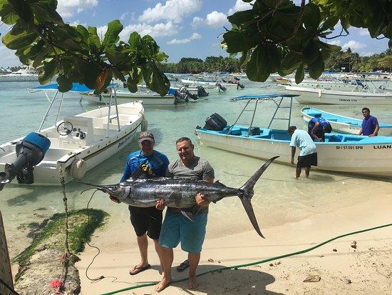 Bayahibe, Dominican Republic: Seconde sortie avec pépé, le 10 août  Sur le chemin du retour pépé aperçoit une frégate et décid