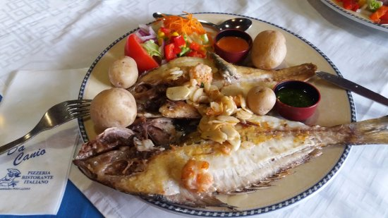 San Andres, Spain: Grilled dorada with vegetables