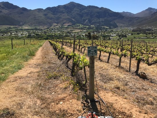 Franschhoek, África do Sul: photo3.jpg