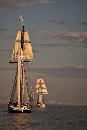 The Pilgrim: SISTER SHIPS